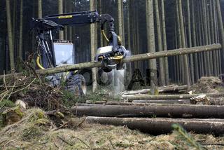 Holzvollernter, harvester