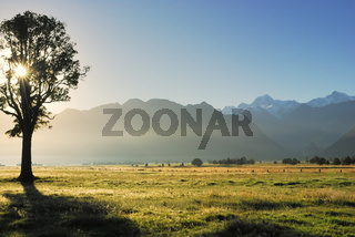 Blick zu Mt. Tasman