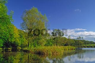 Herbstlandschaft am Mühlenteich