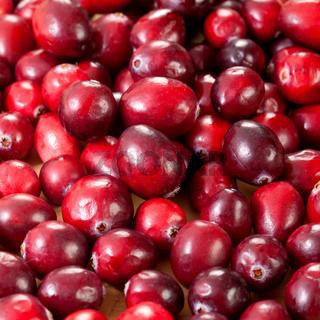 Cranberries / cranberries