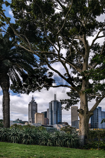Central Business District in Melbourne
