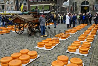 Gouda Käseräder Stapel auf dem Käsemarkt, Gouda, Niederlande