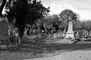 Gräber, Wiener Zentralfriedhof