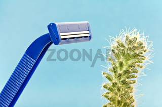Blue safety shave and green spiny cactus - album orientation.