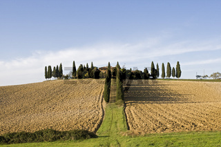 Bauernhof mit Zypressen, Toskana, Italien, Europa, Farm with cypresses, Tuscany, Italy, Europe
