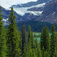 Crowfoot Glacier