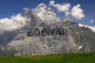 Im Wandergebiet Grindelwald