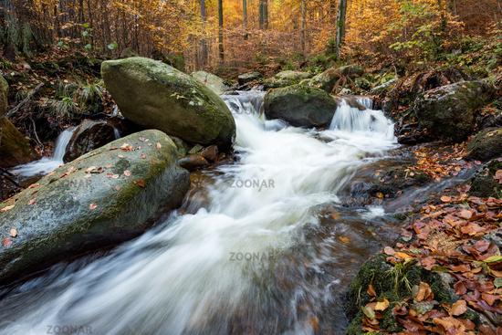 Herbst im lsetal -Harz Sachsen-Anhalt-