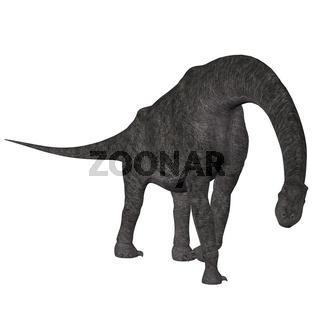 Brachiosaurier