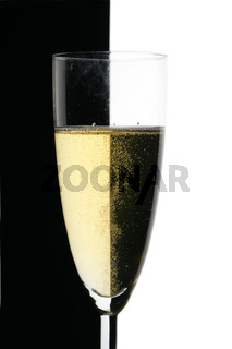 Glass of champagne close-up
