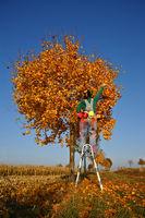 Der Herbst steht auf der Leitder