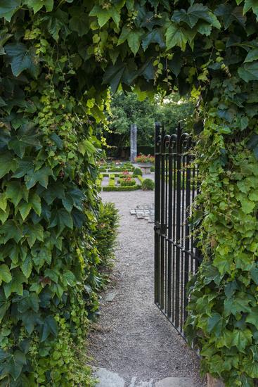 Gate to Garden Patio