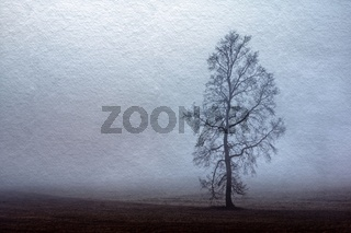 Baum im Nebel auf Feld