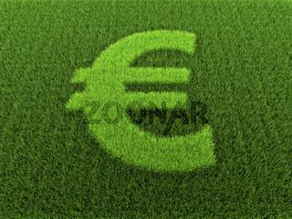 Grass Euro Sign