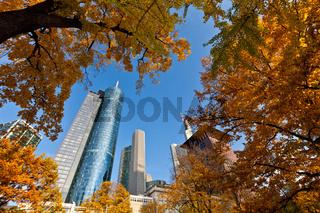 Herbst in Frankfurt; Indian Summer in Frankfurt