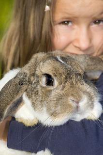 fünfjähriges Mädchen hält ein Kaninchen (mr)