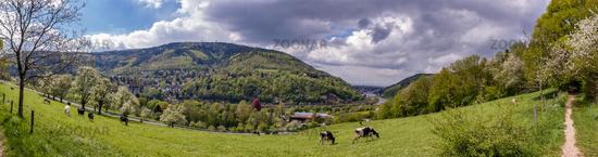 Panoramablick vom Köpfel auf Heidelberg und das untere Neckartal