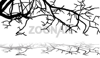 tree branches silhouette