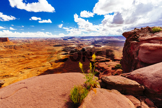 Green River Overlook, Canyonlands, National Park, Utah, USA