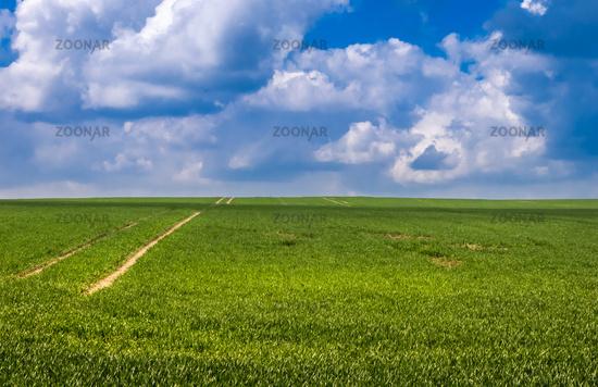 Weites Feld in der Uckermark bei Zollchow (Unteruckersee)