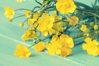 Yellow wildflowers on blue wooden background