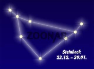 Steinbock, Capricorn