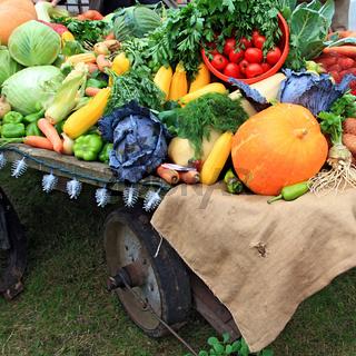 set vegetables on rural market