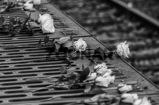 Holocaust-Gedenken in Deutschland