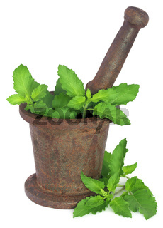 Holy basil or tulsi leaves in a vintage mortar