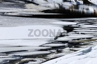 Eisplatten Schollen treiben im Wasser