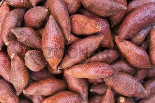 Salakfrucht (Schlangenfrucht) (Salacca zalacca) - Salak fruits (Salacca zalacca)