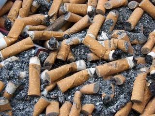 Zigarettenkippen mit Zigarettenasche und einer Zig