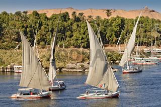 Egypt Aswan Falukas On The River NIle