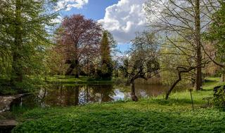 Romantische Teichlandschaft im Park