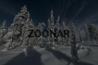 mondbeschienene Winterlandschaft, Lappland