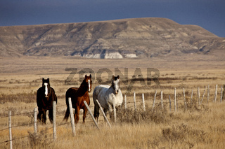 Badlands Canada Saskatchewan