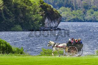 Pferdekutsche am Muckross Lake