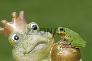 Laubfrosch sitzt auf einem Steinfrosch (Hyla arborea)