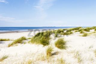 Strand mit Dünen auf Amrum, Deutschland, beach with dunes on Amrum, Germany
