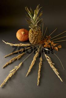 Früchte mit Gräser und Zweige