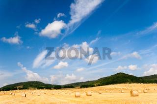 Sommerfelder