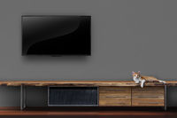 Living room led tvs on wall with kitten on wooden table media furniture modern loft style
