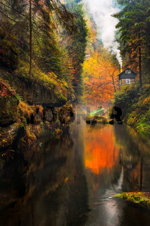 Kamnitz Gorge in Saxon switzerland national park