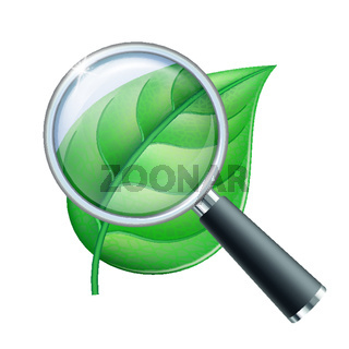 Magnifying glass and leaf