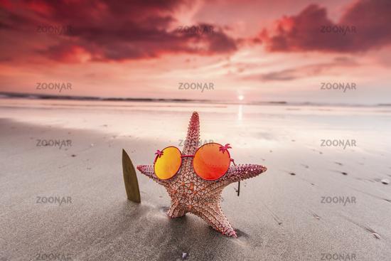 Starfish surfer on the beach