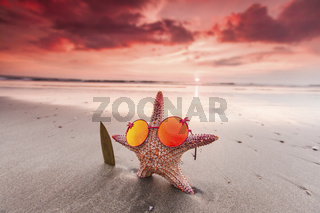 Starfish surfer on the beach