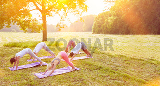 Gruppe macht Yoga im Sommer im Park