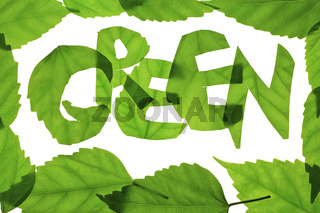 Word 'GREEN' from green leaves