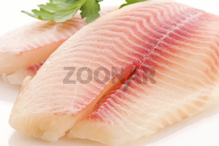 Raw tilapiini fillet with parsley as closeup on a white plate