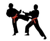 Karate Kick Kikomi